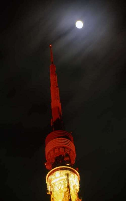 東京タワー(5)