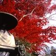 06秋 京都(04)