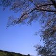 羽村堰04