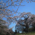 10年04月-2 福島(08)