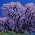 10年04月-2 福島(02)