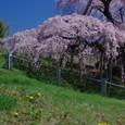10年04月-2 福島(03)