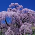 10年04月-2 福島(06)