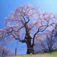 10年04月-2 福島(07)