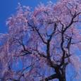 10年04月-2 福島(14)