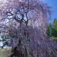 10年04月-2 福島(16)