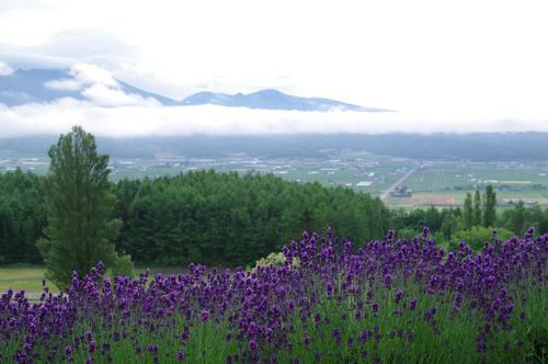 0907北海道07