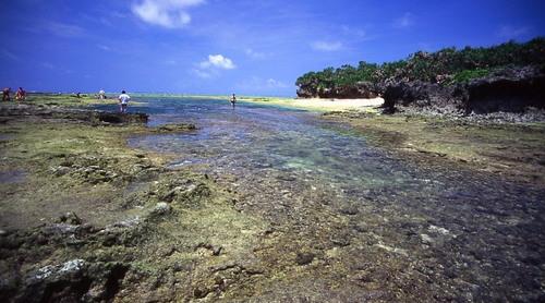 沖縄2005(33)