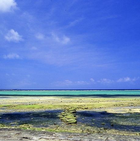沖縄2005(37)