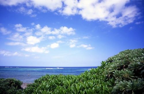 沖縄2005(46)