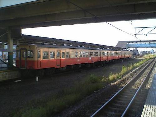 おさんぽ(11-04)