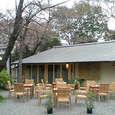 愛宕神社(4) (愛宕 / 東京)