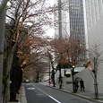 桜坂(1) (赤坂 / 東京)