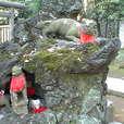 根津神社(2) (根津 / 東京)