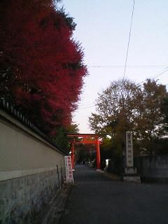 京都観光のコツ?