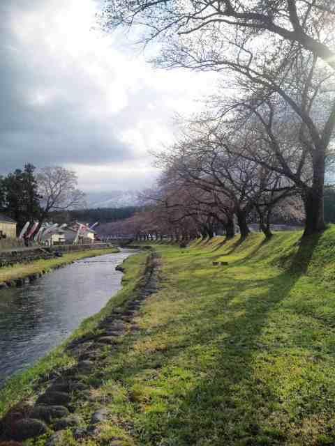 今日の洗沢川